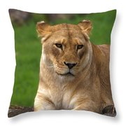 Resting Power Throw Pillow