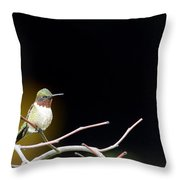 Resting Ruby Throw Pillow