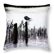 Resting Seagull  Throw Pillow