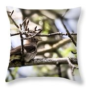 Resting Singer  By Leif Sohlman Throw Pillow