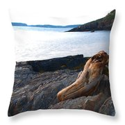 Resting Traveller Throw Pillow