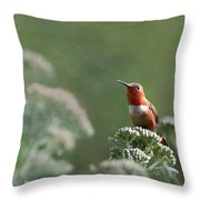 Resting With Nature Throw Pillow