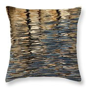 Retaining Wall Reflection Throw Pillow