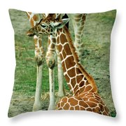 Reticulated Giraffe And Calf Throw Pillow