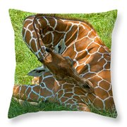 Reticulated Giraffe Sleeping Throw Pillow