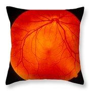 Retina Throw Pillow