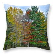 Retreating Pines Throw Pillow