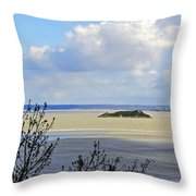 Retreating Tide Throw Pillow