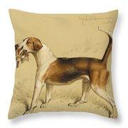 Retribution Throw Pillow by Basil J Nightingale