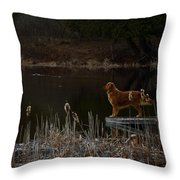 Retriever Focus Throw Pillow