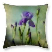 Retro Iris Metting Throw Pillow