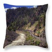Retro Throw Pillow by Joan Carroll