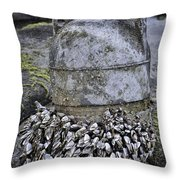 Returned From The Ocean Throw Pillow