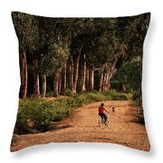 Returning Home Throw Pillow by Mary Jo Allen
