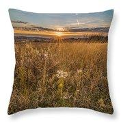 Retzer Autumn Sunset Throw Pillow