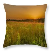 Retzer Sunset Throw Pillow