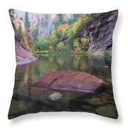 Revisited Throw Pillow