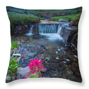 Reynolds Mountain Paintbrush Throw Pillow
