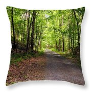 Wooded Path 12 Throw Pillow