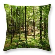 Wooded Path 13 Throw Pillow