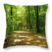 Wooded Path 16 Throw Pillow