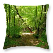 Wooded Path 17 Throw Pillow