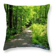 Wooded Path 20 Throw Pillow