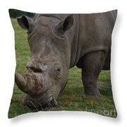 Rhino 2 Throw Pillow