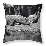 Rhino Nap Time Throw Pillow