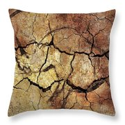 Rhinoceros From Chauve Cave Throw Pillow