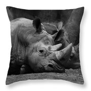Rhinos Throw Pillow