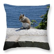 Rhode Island Squirrel Throw Pillow