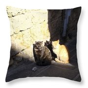 Rhodes Cat Trio Throw Pillow