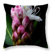 Rhododendron Begining Throw Pillow