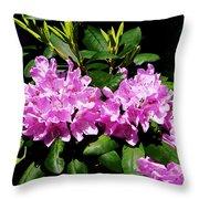Rhododendron Closeup Throw Pillow