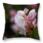 Rhododendron Enborne Throw Pillow