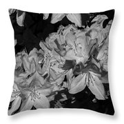 Rhododendron Heaven In Black And White Throw Pillow