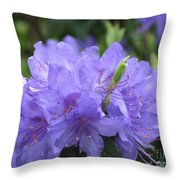 Rhododendron Impeditum Throw Pillow