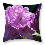 Rhododendron In The Morning Light Throw Pillow