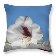 Rhododendron In White And Burgundy Throw Pillow