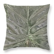 Rhododendron Leaf Throw Pillow