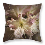 Rhododendron Mary Fleming Throw Pillow