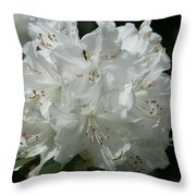 Rhododendron Purity Throw Pillow