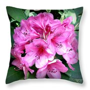 Rhododendron Square With Border Throw Pillow
