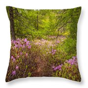 Rhodora Bloom In Acadia Throw Pillow