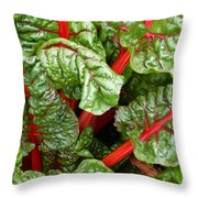Rhubarb Abstract Throw Pillow