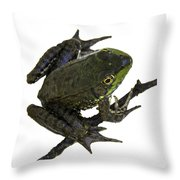 Ribbeting Frog In A Bucket Throw Pillow