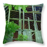 Ribs Of A Decaying Barn Throw Pillow