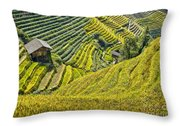 Rice Fields Terraces Throw Pillow