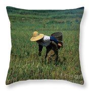 Rice Harvest In Southern China Throw Pillow